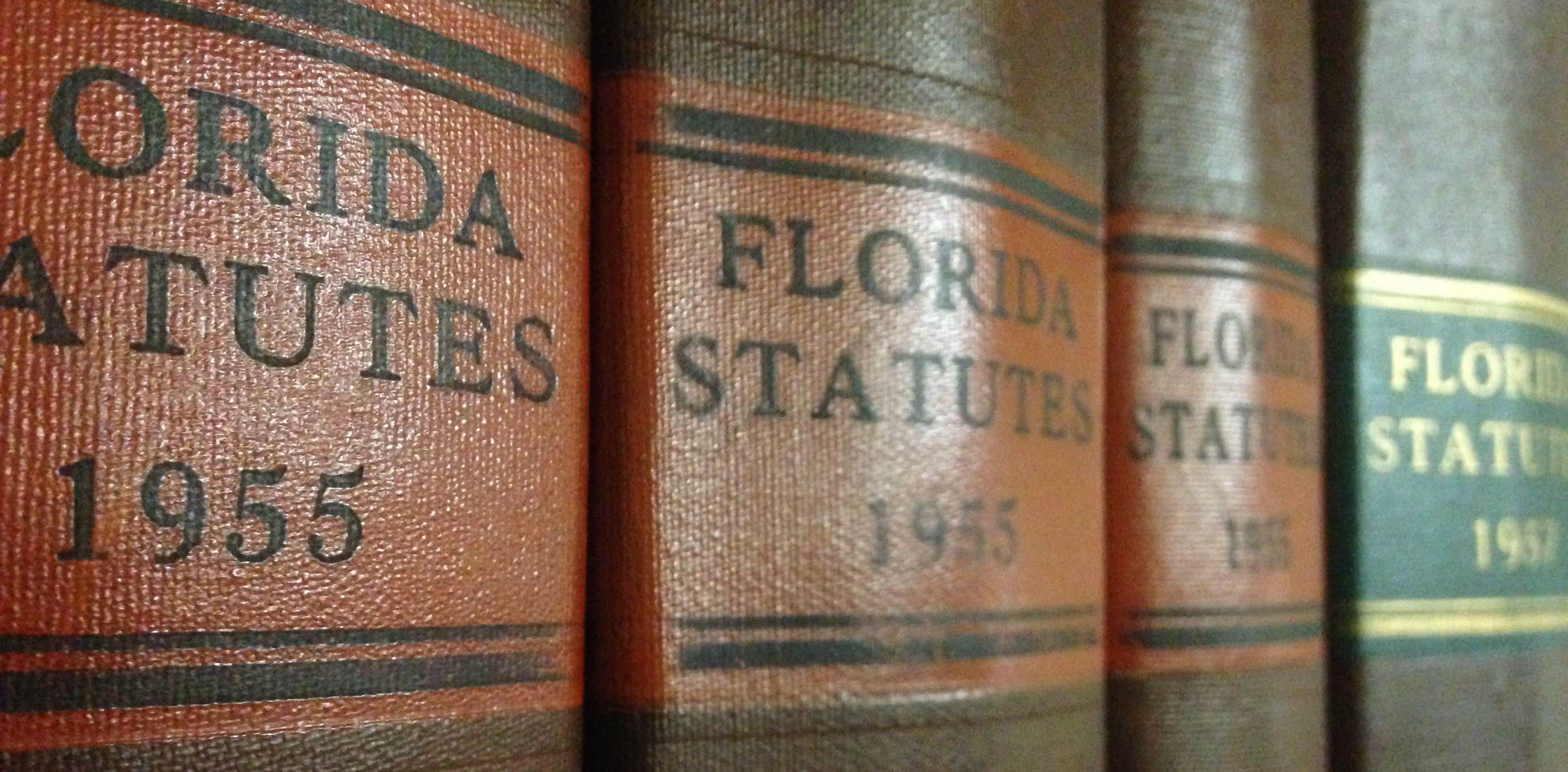 florida statutes books